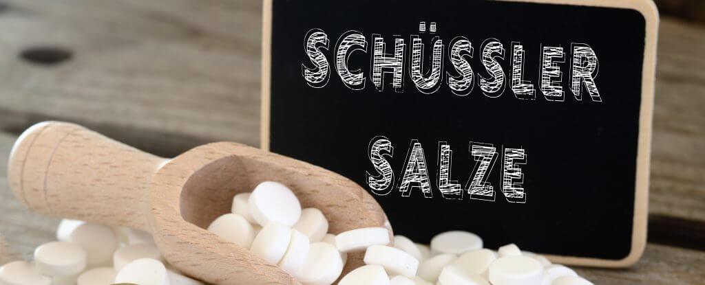 Schüssler Salze Ausbildung