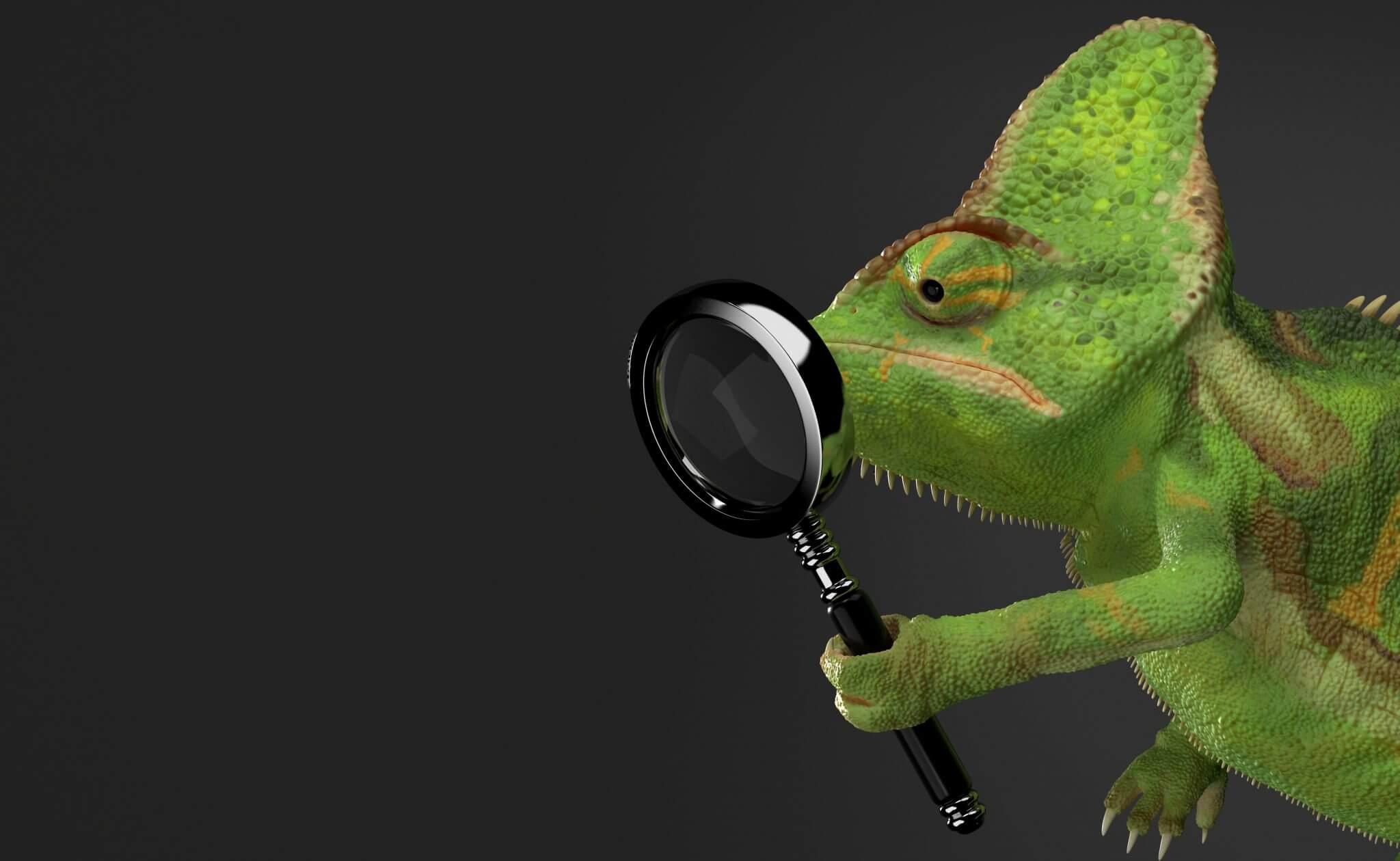 Tierheilpraktiker mit Fachrichtung Reptilien