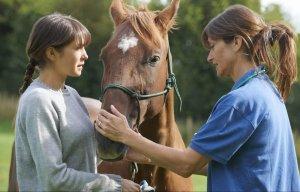 Tierheilpraktiker Groß- und Kleintier für medizinisch Vorgebildete