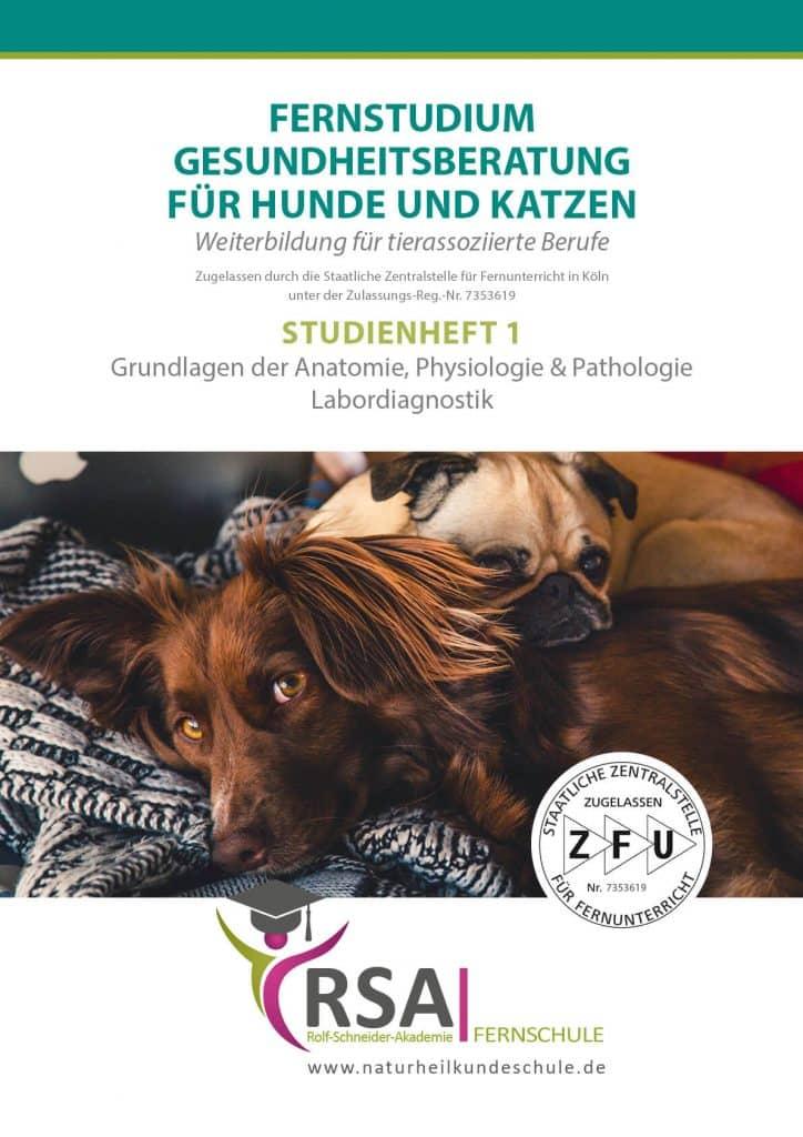 Gesundheitsberatung für Hunde und Katzen