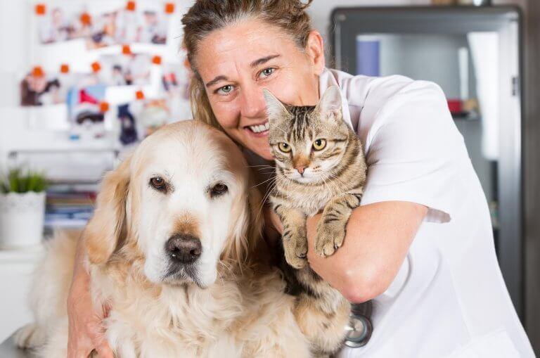 Gesundheitsberater für Hund und Katzen