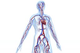 Differentialdiagnose Herzinsuffizienzen und -erkrankungen