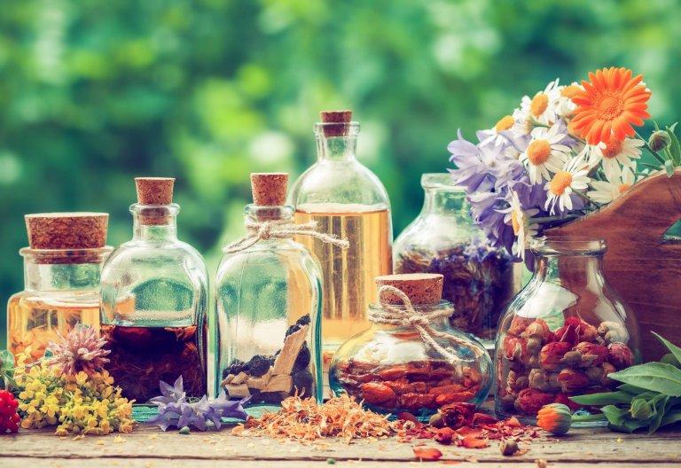 Kräuter- und Vitalpilze für Tiere